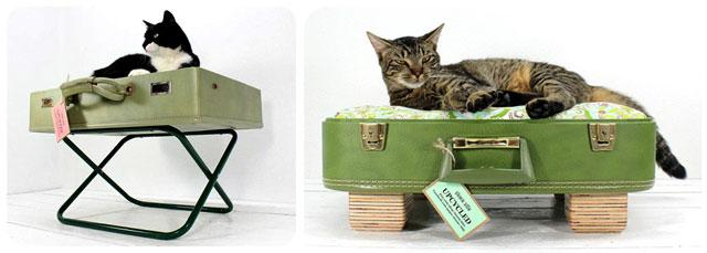 02caminha-pra-gato-de-mala-reciclada.jpg