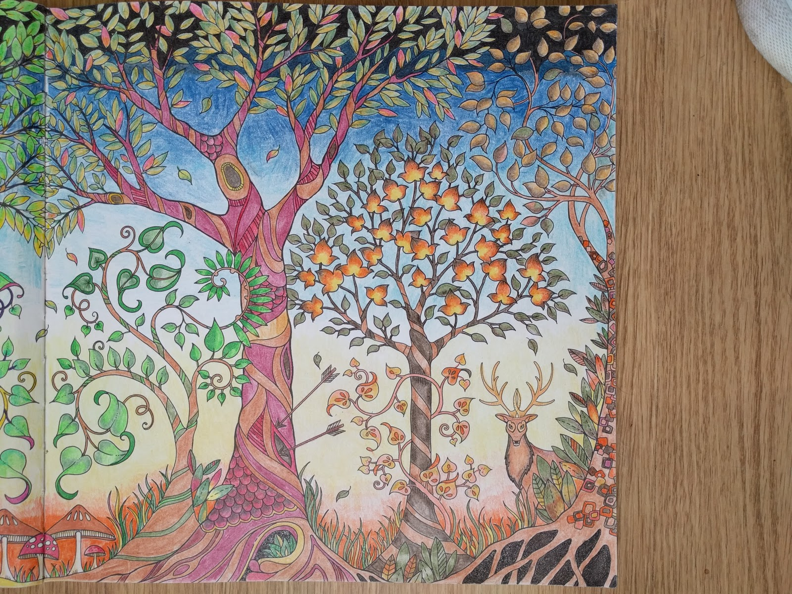 This Shows A Close Up Of The Right Side Forest And Summer Trees Fall