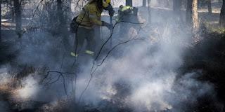 http://www.efeverde.com/noticias/guadalcanal-sevilla-cuatro-incendios/