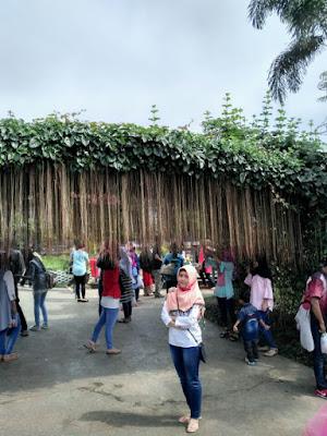 Wisata Alam Pasir Kirisik Ciawi Tasikmalaya