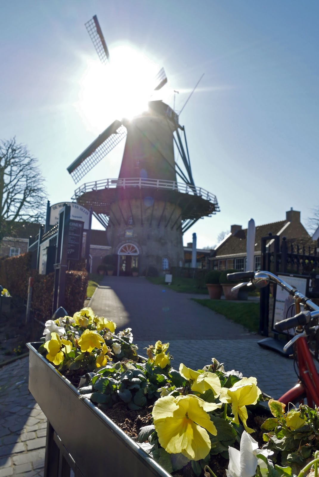 Windmill in Sluis, The Netherlands