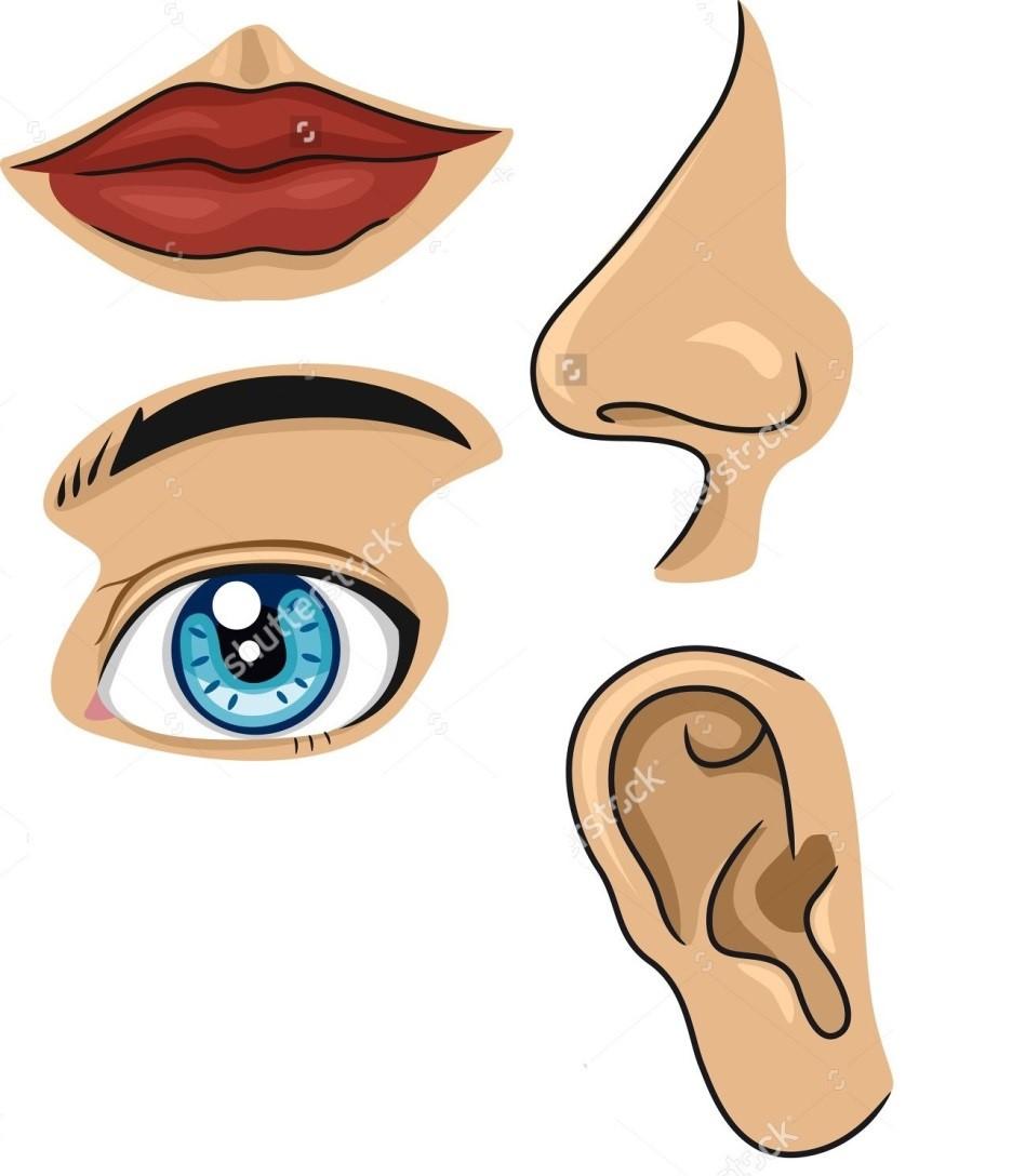 была запечатана картинки рот нос глаз уход девушки
