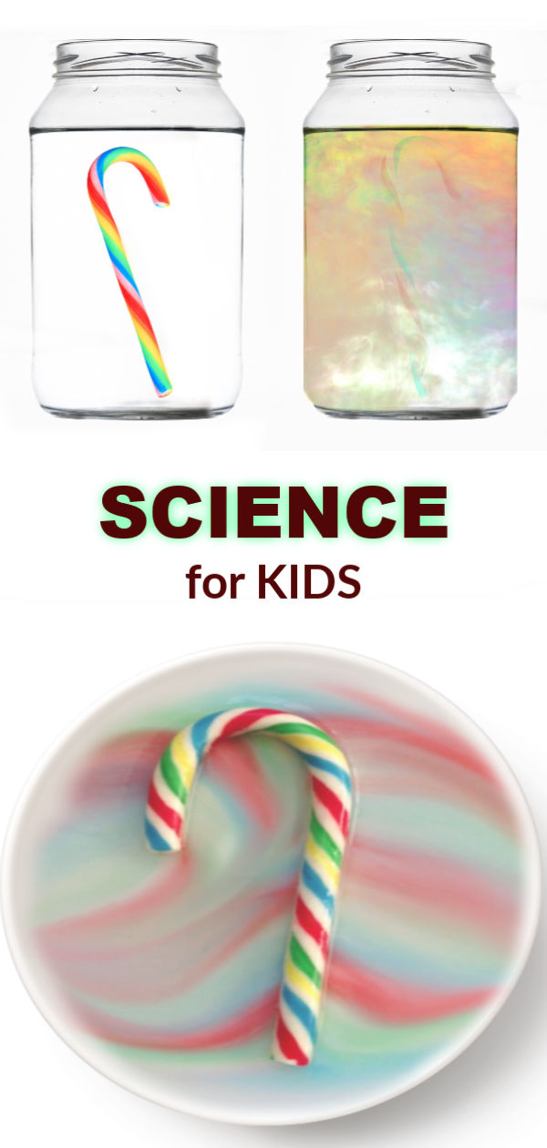 MAKE A CANDY CANE DISAPPEAR!  So cool! #experimentforkids #scienceexperimentskids #candycanecrafts #candycaneexperiment #candycaneexperimentforkids #candycanescience #disappearingcandycane #growingajeweledrose