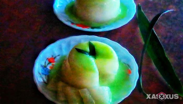 Resep cara membuat puding santan vla susu melon