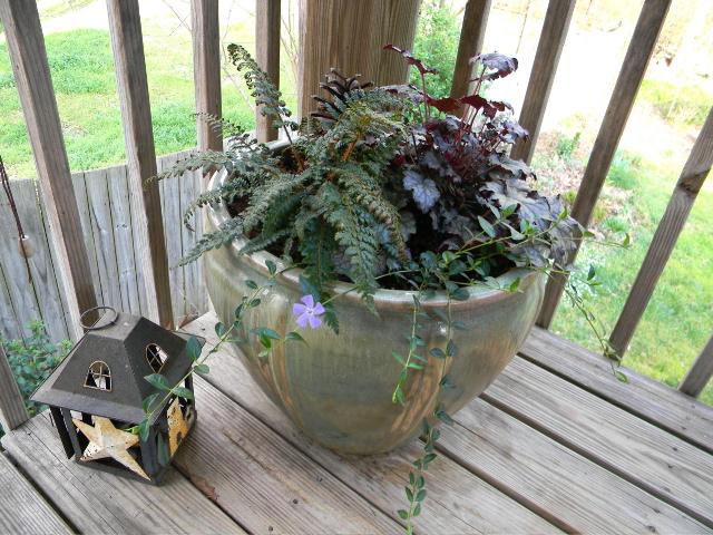 Walk In Garden Box: A Walk In Our Garden: Perennial Containers