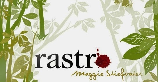 Maggie Stiefvater (PDF/EPUB)
