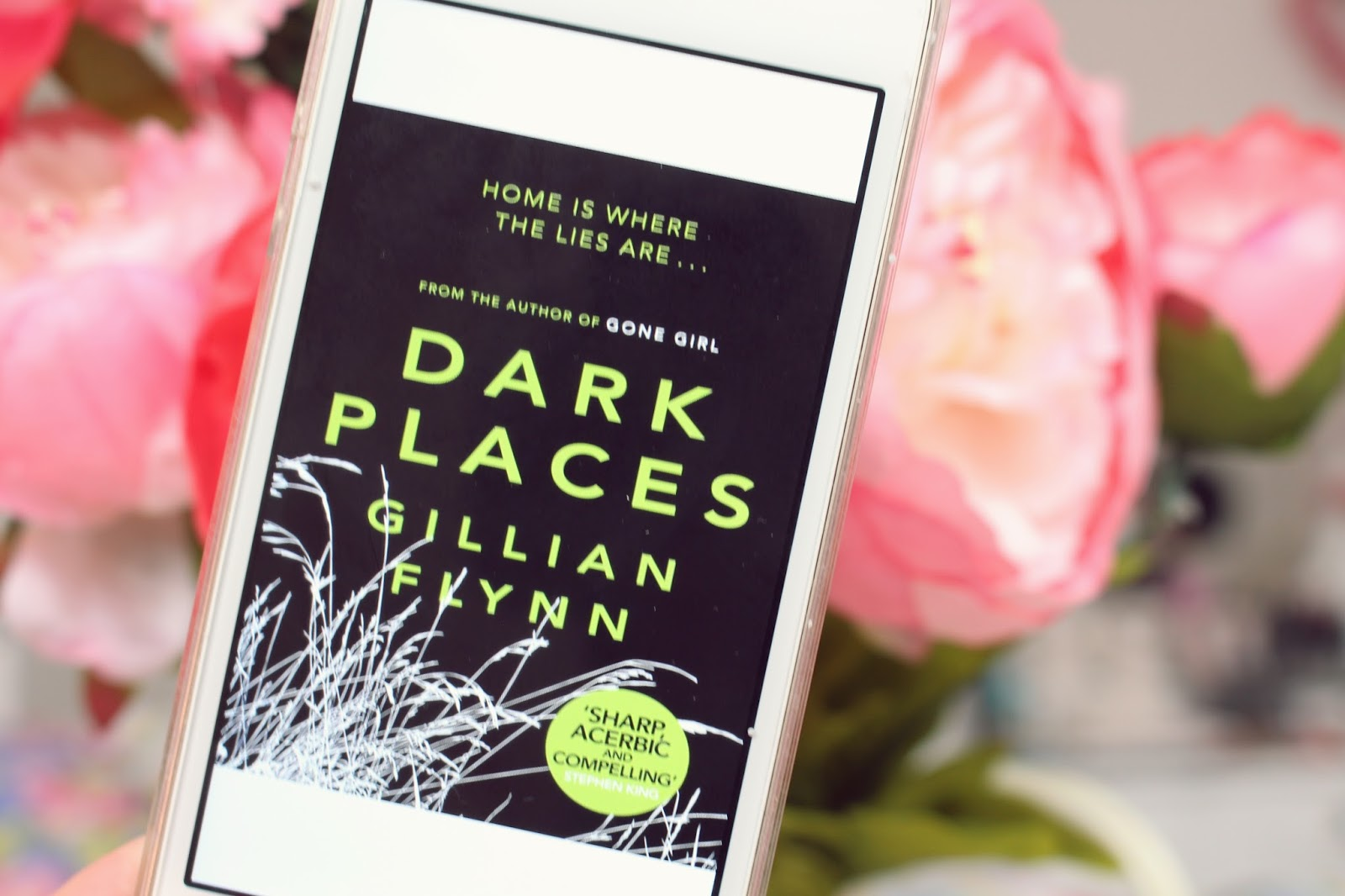 Dark Places Gillian Flynn Book Review