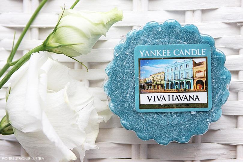 wosk yankee candle viva havana