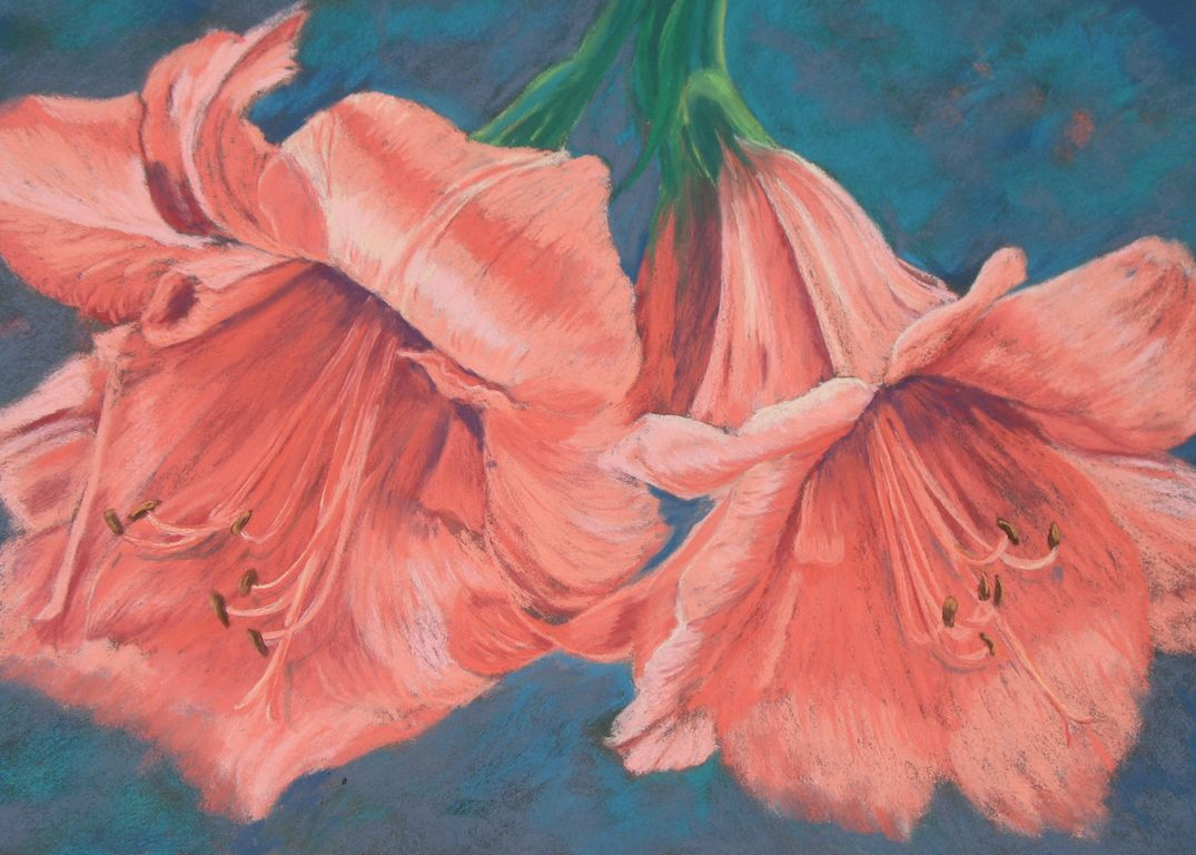 Marion S Floral Art Blog Peach Amaryllis In Soft Pastels
