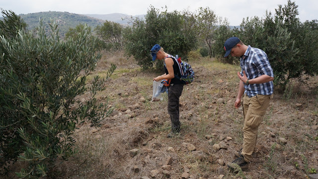 Megalithic constructions discovered in Lebanon