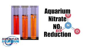 How to: Nitrate Reduction