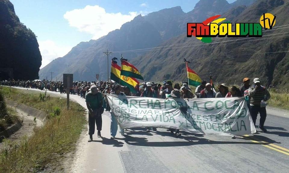 La marcha de ADEPCOCA ya pasó Unduavi en el séptimo día de caminata / FM BOLIVIA