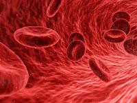 10 Tanda Ciri Ciri Kurang Darah atau Anemia dan Apa Penyebabnya