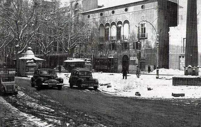 Palma nevada 1956