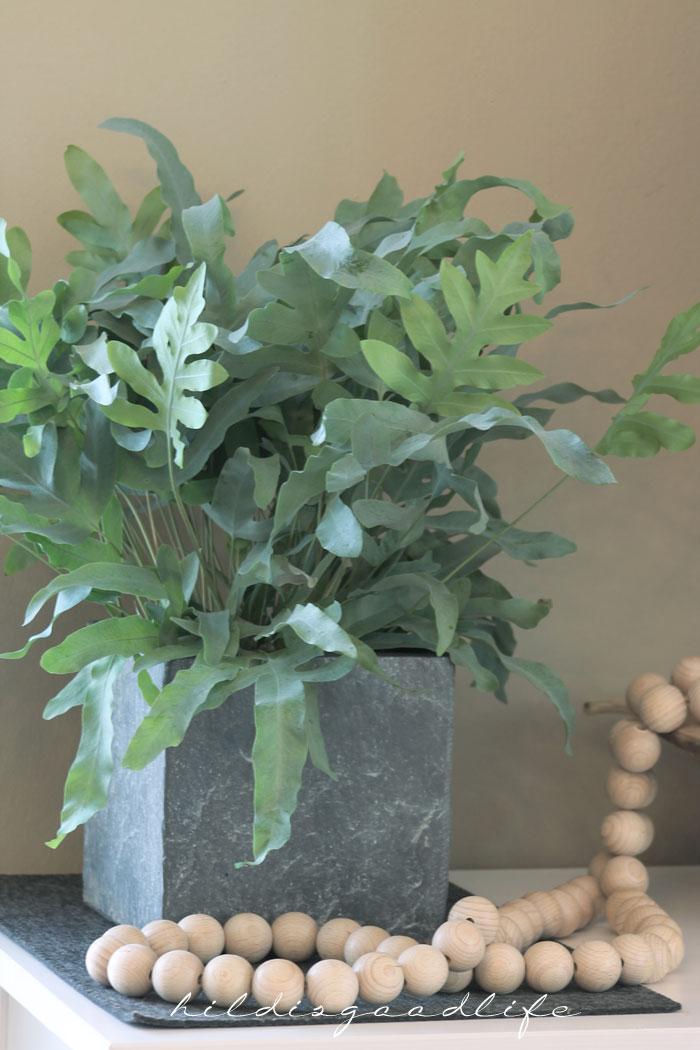Graugrüne Pflanzen für den Januar