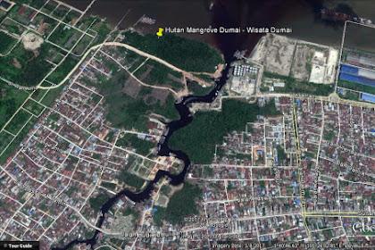 Hutan Mangrove Dumai - Wisata Dumai