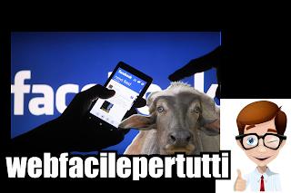 """Attenti Alla Bufala Del 12 Aprile """"Facebook Mostrerà Chi Visualizza Il Tuo Profilo"""""""