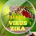 Mengenal Bahaya Infeksi Virus Zika