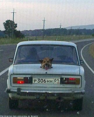 Altes russisches Auto witziger Hund im Kofferraum