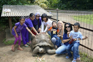 Godong Ijo Depok: Wisata Edukasi yang Asik Buat Berakhir Pekan Bareng Keluarga