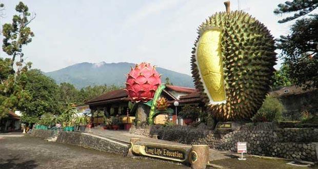 dan sekitarnya sungguh elok dan menarik minat banyak wisatawan dari banyak sekali daerah di I 10 Tempat Wisata di Bogor Yang Bagus Dan Menarik