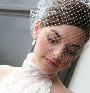 bride wearing a birdcage veil
