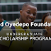 David Oyedepo Foundation Undergraduate Scholarship Form - 2018/2019