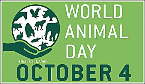 World Animal Day 4 October 2020