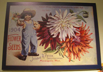 Litho of colorful asters