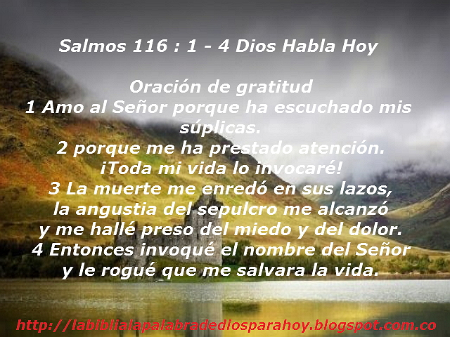 Oración de gratitud-Salmos 116 1 4 - Dios Habla Hoy