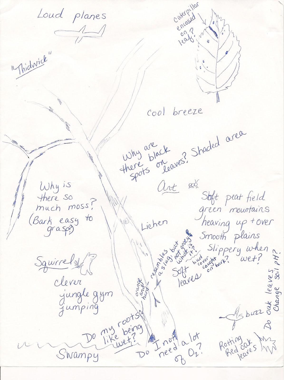 Summer 2012 Nature Journal