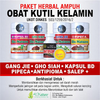 Agen Resmi Penjualan Obat Kutil Kelamin De Nature Indonesia, de nature untuk kondiloma, cara pakai salep de nature