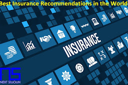 Best Insurance Recommendations in the World