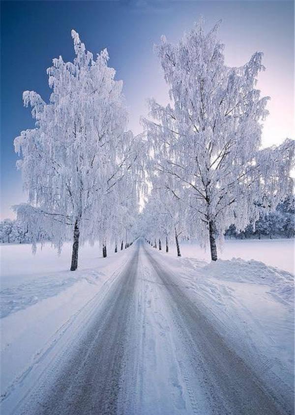 ✯ Snow Path