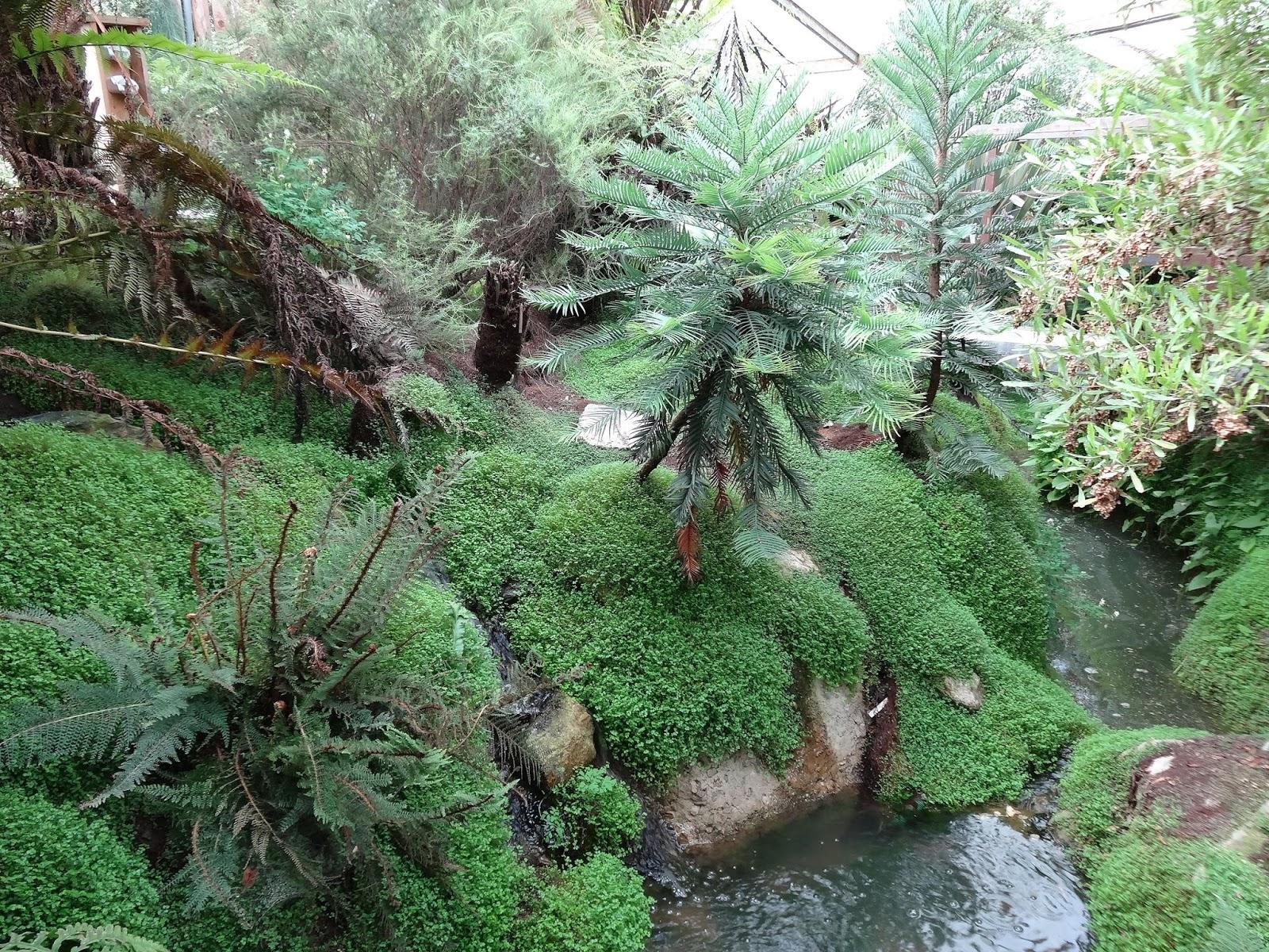 Le blog de parcs et jardins de l 39 oise la serre de plantes for Jardin du plantes