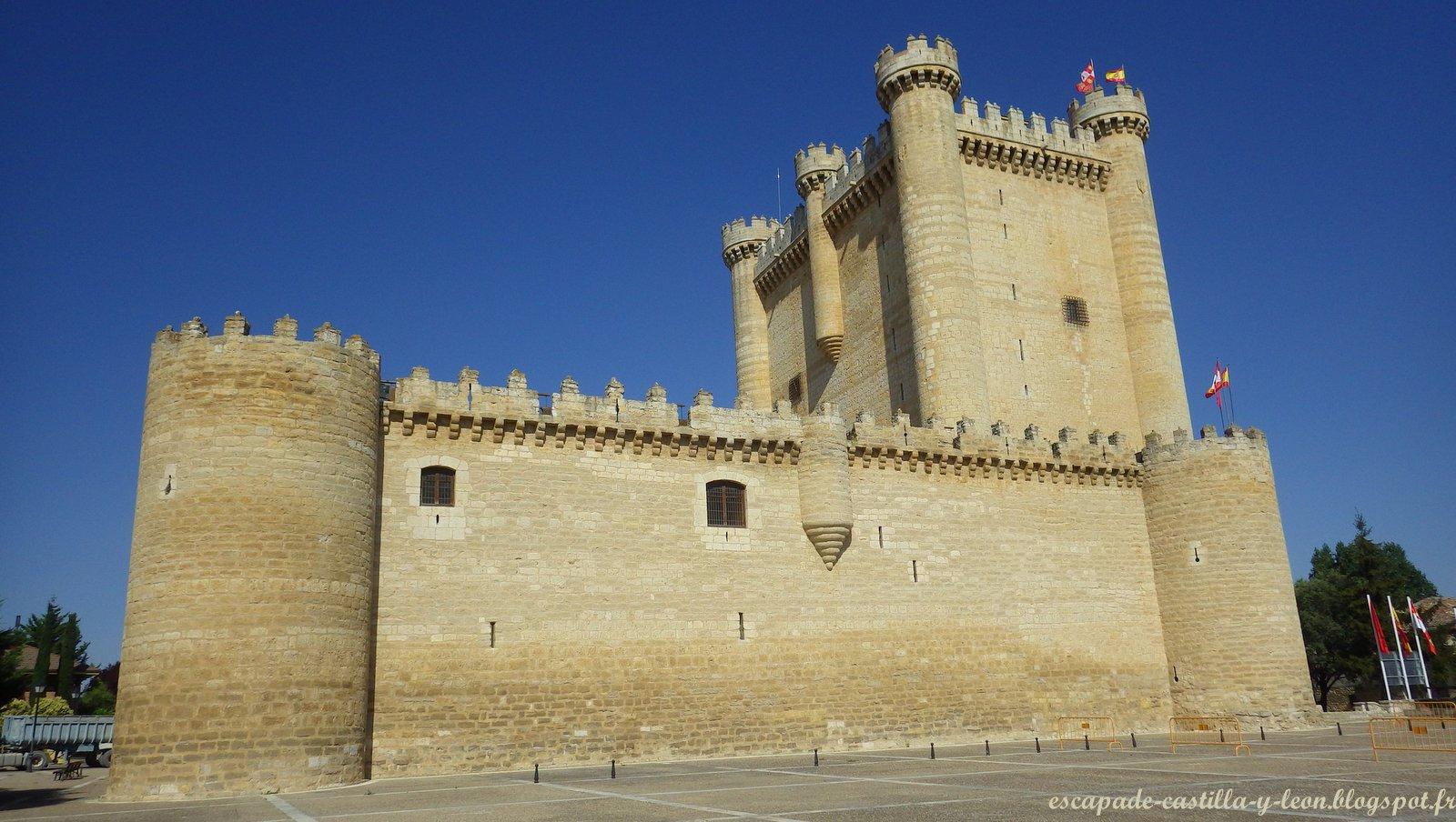Escapade En Castilla Y Len Castillo De Fuensaldaa Le