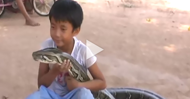 Unbeatable friendship between a Kid and a huge Snake