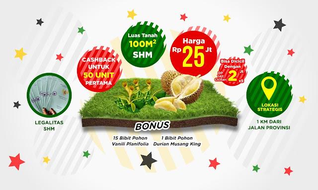 Investasi Kavling Vanili Garden - Income Hingga 100 jt-an Per Panen