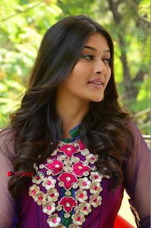 Actress Pooja Jhaveri Latest Stills in Purple Salwar Kameezt at Dwaraka Success Meet  0215.JPG