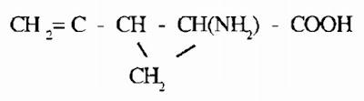 Thành phần hó học Quả Vải - Litchi sinensis - Nguyên liệu làm thuốc Chữa Đi Lỏng-Đau Bụng
