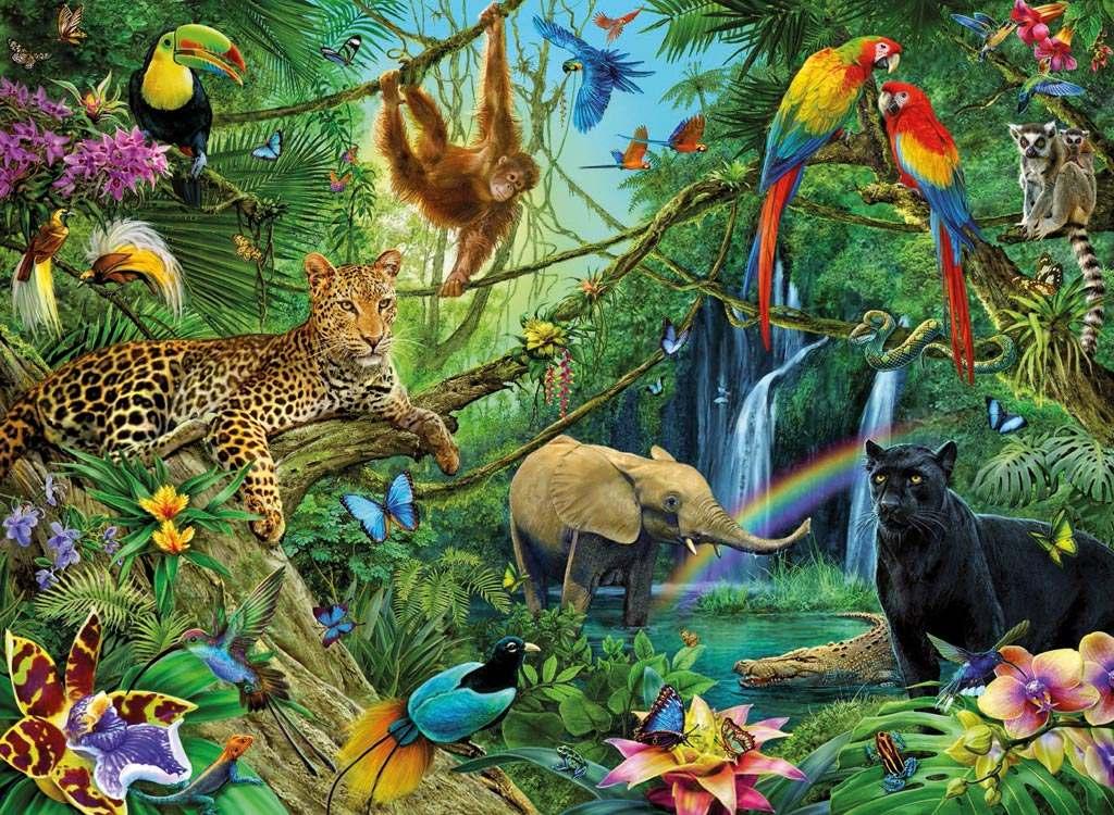 Resultat d'imatges de els animals