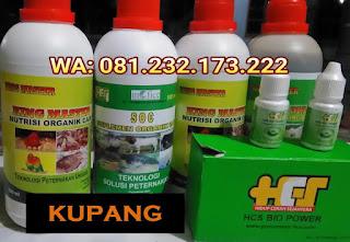 Jual SOC HCS, KINGMASTER, BIOPOWER Siap Kirim Kupang