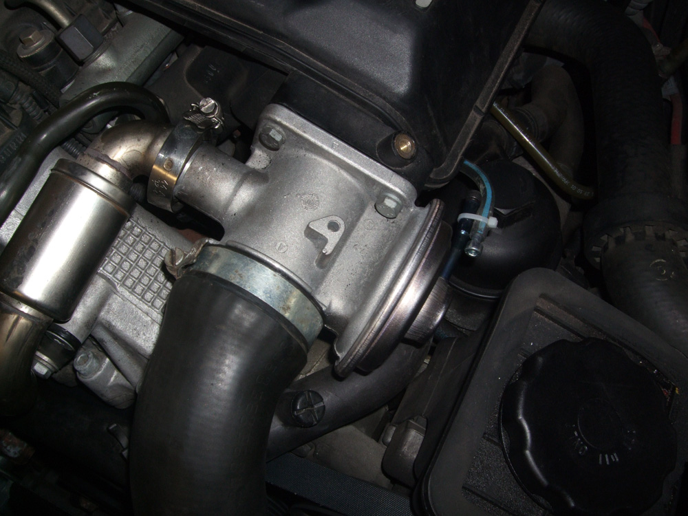BMW E46 EGR Valve Bypass [Visual Guide]