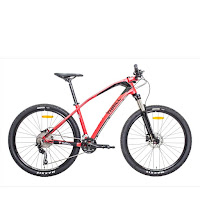 275 thrill ravage 30 mtb