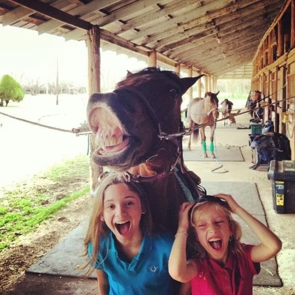 Funny animals of the week - 21 February 2014 (40 pics), two little girls take a picture with a horse