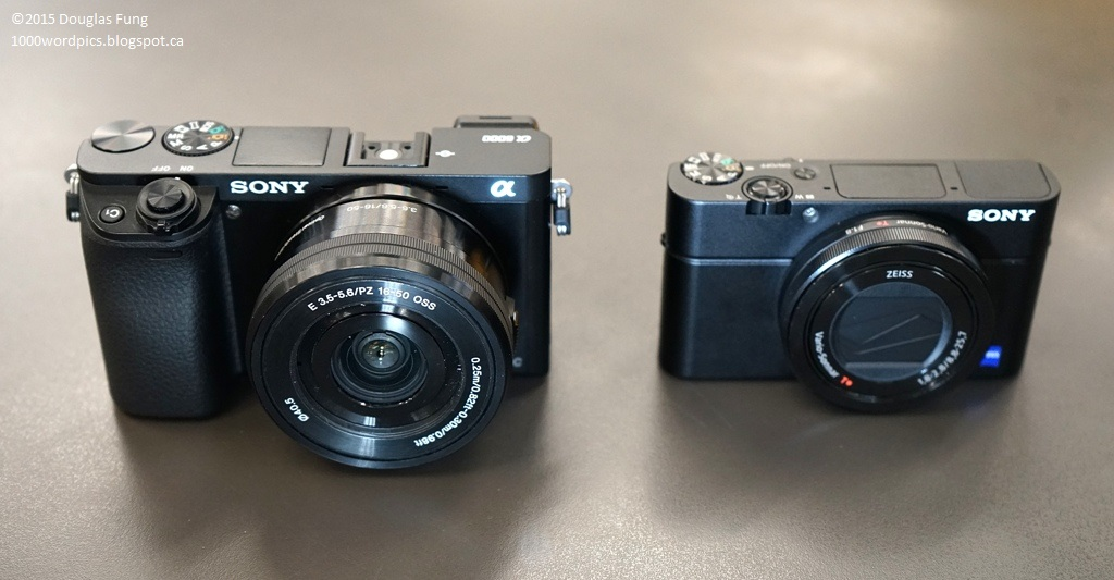 A Thousand Words A Picture Sony Rx100m3 Vs Sony A6000