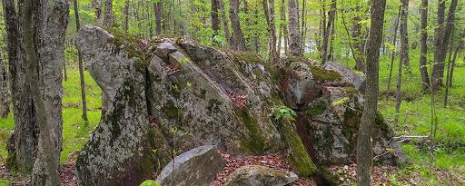 iat turtle rock segment