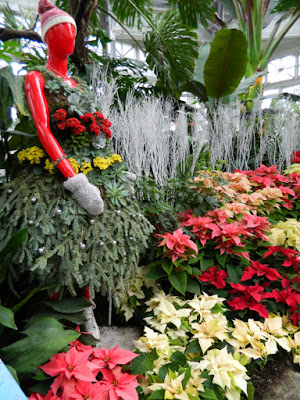 Floral skater at Allan Gardens Conservatory Christmas Flower Show 2015 by garden muses-not another Toronto gardening blog