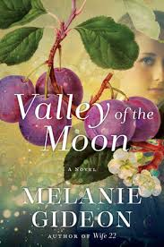 https://www.goodreads.com/book/show/30008681-valley-of-the-moon?ac=1&from_search=true