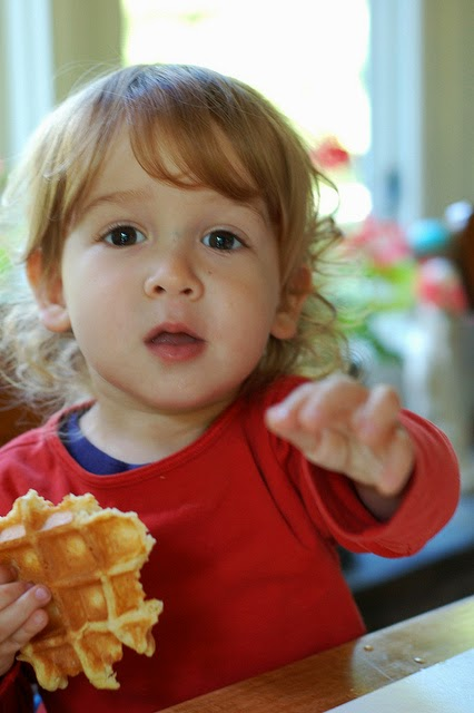 My youngest loves waffles by Eve Fox, the Garden of Eating copyright 2014